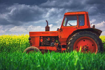 Wall Mural - Tractor in the agricultural fields
