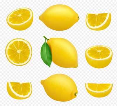 Lemons collection. Realistic picture of citrus yellow juice natural foods healthy natural products vector pictures. Fruit food citrus healthy, fresh juice lemon illustration
