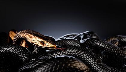 Bronze or Golden Snake among Black Snakes. 3D illustration