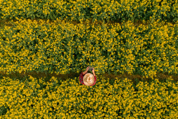 Aerial view of farmer using drone remote controller in blooming rapeseed field
