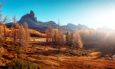 Fotomurales - Fantastic sunny landscape in mountains with autumn forest. Wonderful summer scenery during sunset. Awesome alpine highlands under sunlit. Dolomites alps. Federa lake. Italy. Creative image