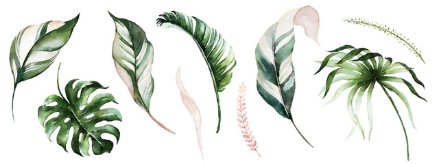 Watercolor tropical floral illustration set with green & blush leaves for wedding stationary, greetings, wallpapers, fashion, backgrounds, textures, DIY, wrappers, postcards, logo, etc. Wall mural