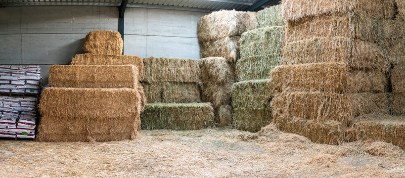 Haystacks sorted inside an agricultural modern warehouse in Extremadura at the Spanish countryside. A rural area with great farmlands and an agricultural industry based living