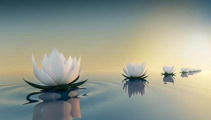 Obraz 3d lots flower on calm ripple water - fototapety do salonu