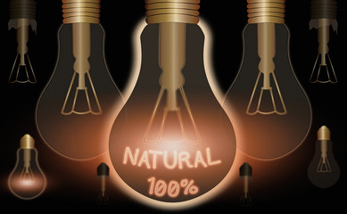 Conceptual hand writing showing Natural 100 Percent. Concept meaning Minimally processed and does not contain artificial flavors Wall mural