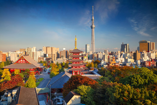 Tokyo. Cityscape image of Tokyo skyline during sunny autumn day in Japan.