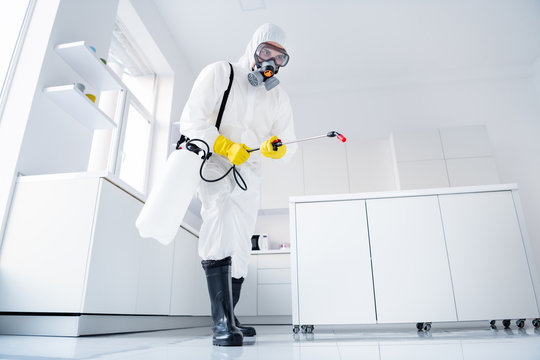 Low angle view full body photo of focused cleaner man in protective uniform glasses gloves hold sprayer spray stop covid19 epidemic spreading surface floor in kitchen house indoors