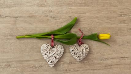 Tulipan żółty z ozdobie