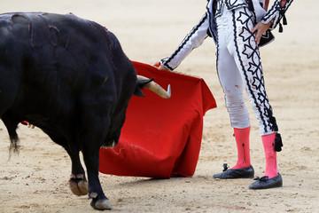 Bullfight in Spain
