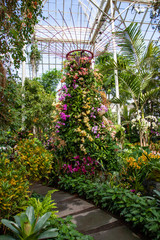 Beautiful Garden Tall Trellis with Orchids