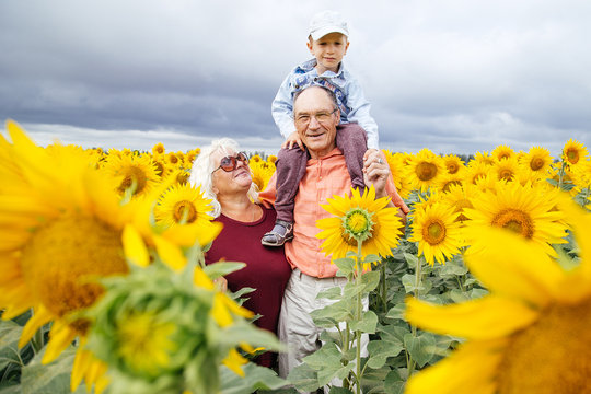 Grandparents spend time with their grandson in a field of sunflowers.