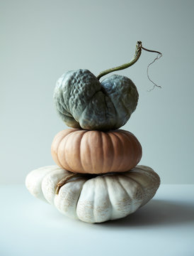 Stack of Pumpkin and Gourds