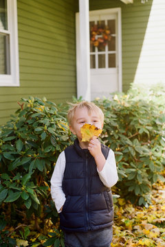 Little boy playing in his yard and holding up a yellow maple leaf