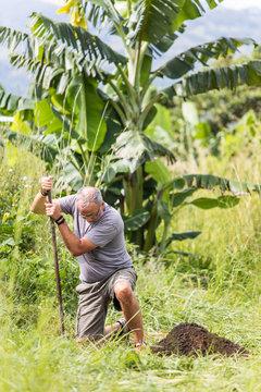 Elderly man digging deep hole with shovel outdoors.