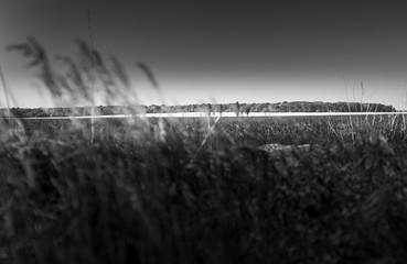 Autocollant pour porte Gris traffic Photo de nature et de paysage éditer en noir et blanc