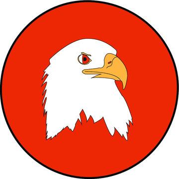Eagle - Aquila su sfondo arancio