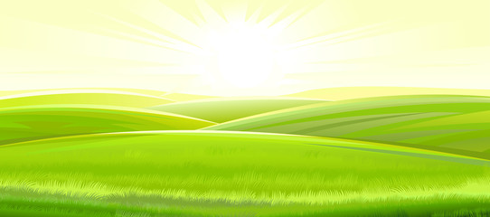 Fototapeten Lime grun Sunny rural landscape. Vector. Green meadows and fields, grassy hills flooded with bright rays of sunlight. Ripe juicy grass. Summer, spring morning.