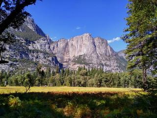 Poster de jardin Parc Naturel Landscape with meadows in Yosemite National Park. California. USA.