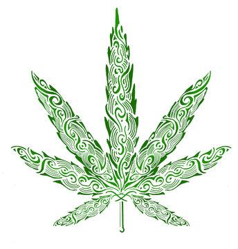 cannabis plant leaf
