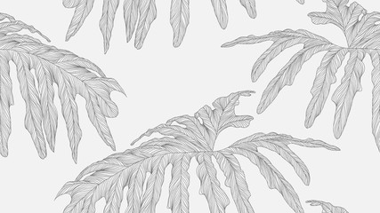 Foliage seamless pattern, Philodendron bipinnatifidum leaves line art ink drawing in dark grey on bright grey