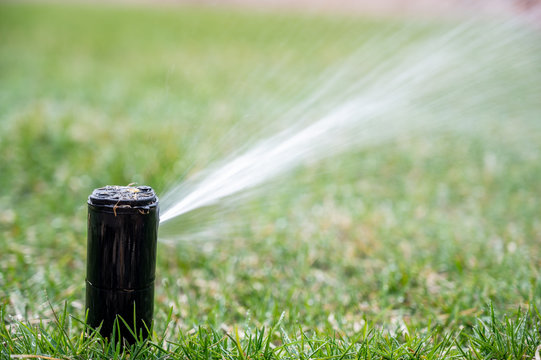 pop up automatic water sprinkler spraying jet across lawn