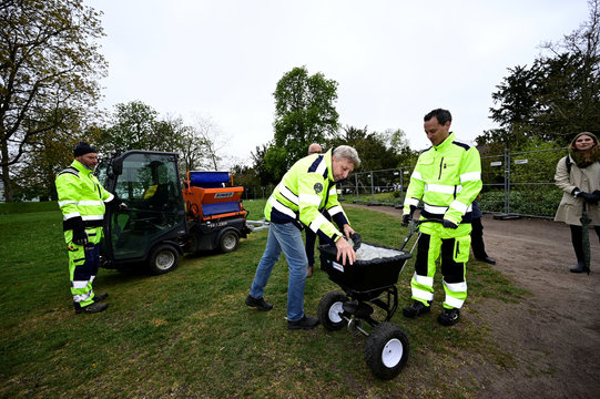 Garden workers fertilise lawns in Stadsparken in an attempt to prevent residents from gathering there to mark the Walpurgis Night, in Lund