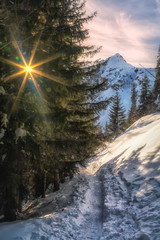 Zimowy spacer szlakiem w kierunku Czarnego Stawu Gąsienicowego w Tatrach
