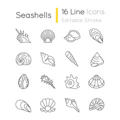 Seashells pixel perfect linear icons set. Different mollusk shells customizable thin line contour symbols. Various sea shells collection isolated vector outline illustrations. Editable stroke