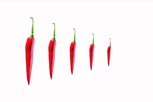 red hot chilli peppers scoville scale  scotch bonnet