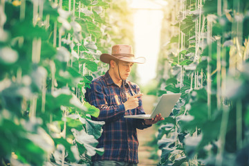 Farming uses modern technology in agriculture. A farmer agronomist with a digital tablet in the green house of a melon farm Fototapete
