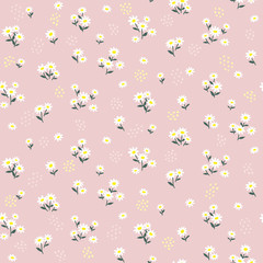 Pink daisy seamless pattern. Floral print