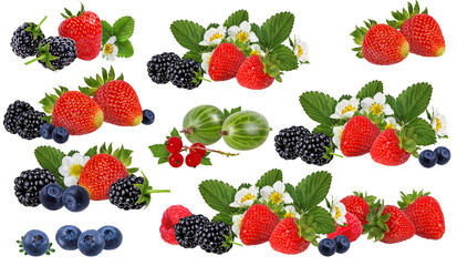 Fototapete - Berries collection isolated on white background