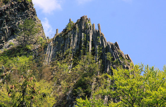 Basaltic columns emerging from forest at Detunata