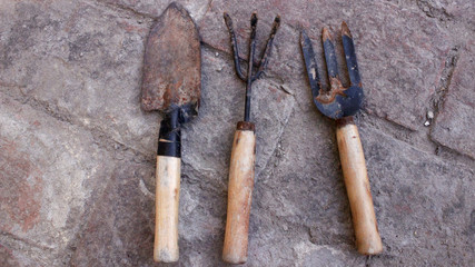 Gardening tools for small gardens