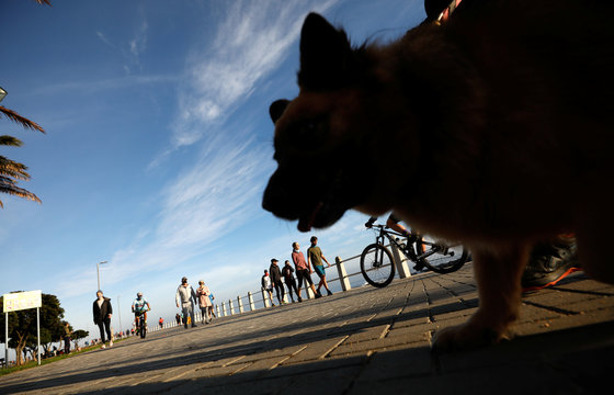 Joggers, dog walkers and cyclists take the chance to exercise as South Africa starts to relax some aspects of a stringent nationwide coronavirus disease (COVID-19)  lockdown  in Cape Town