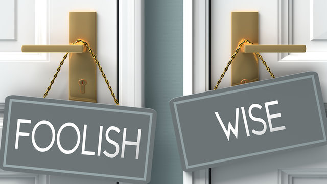 wise or foolish as a choice in life - pictured as words foolish, wise on doors to show that foolish and wise are different options to choose from, 3d illustration