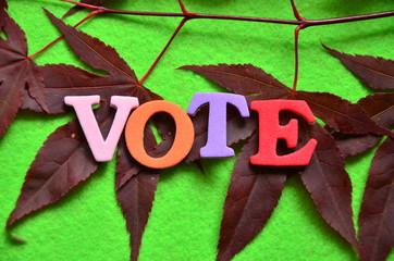 slowo vote - fototapety na wymiar