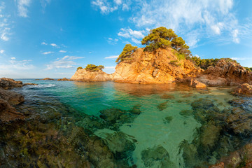 Fototapete - Summer tropical landscape