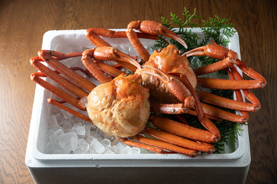 japanese snow crabs in styrofoam box