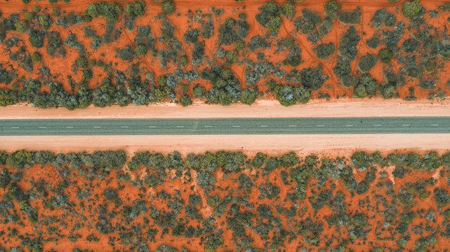 road leading through bushland