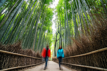 Couple hiking in green bamboo forest