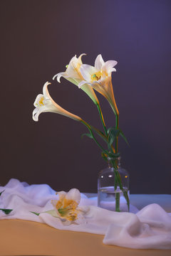 bouquet of white lilies in the vase