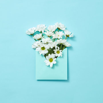 White flowers in an envelope on a pastel background.