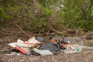 Fototapeta Śmieci przy drodze. obraz