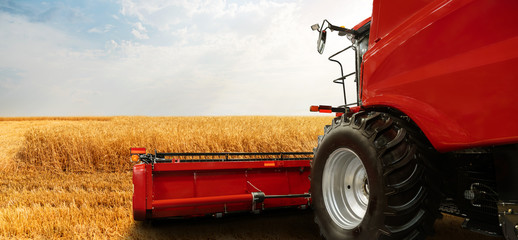 Etiqueta Engomada - Combine harvester on the wheat field
