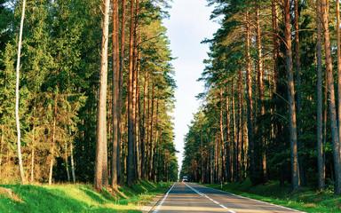 Keuken foto achterwand Weg in bos Scenery of road in forest in Poland reflex