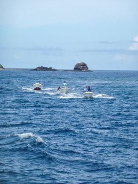 Three Motor boats near an island at the Fijis