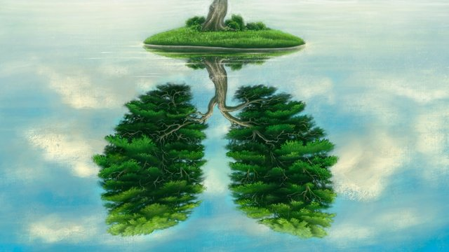 Reflection of lung tree
