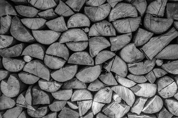 Keuken foto achterwand Brandhout textuur Pile of tree trunks chopped for firewood