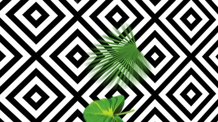 Wall Mural - Falling green tropical leaves on a geometric black and white background. Exotic botanical 4k animation from realistic vector hand drawn objects in motion